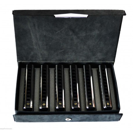 SUZUKI BLUESMASTER MR-250 HARMONICA 6-PIECE SET.LASER TUNED REEDS