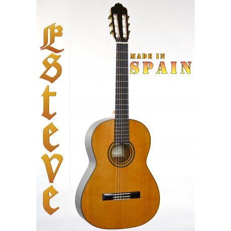 ESTEVE 6PS SPANISH MADE CLASSICAL GUITAR SOLID TOP GREAT PROJECTION